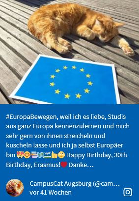 #Europa bewegen - Post Campus Cat